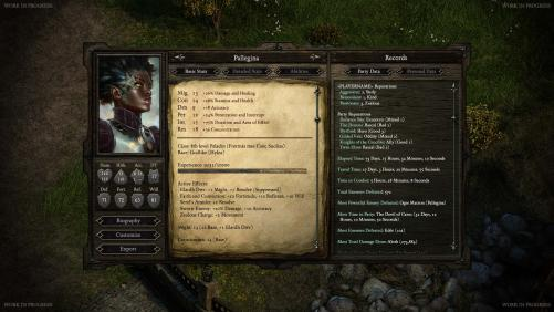 th Pillars of Eternity   zobacz karte postaci z RPG a studia Obsidian 193524,3.jpg